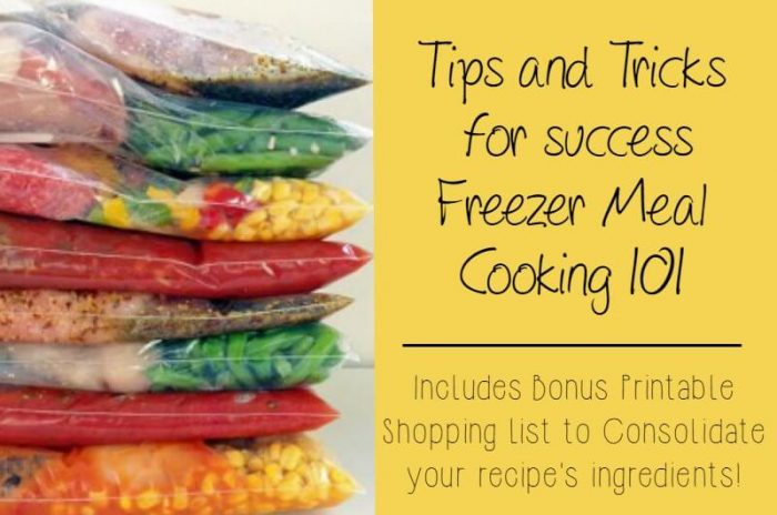 Freezer Meals 101: Tips and Tricks for Successful Freezer Meals