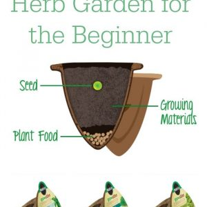 How to Grow and Herb Garden, for the beginner