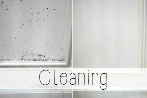 DIY Cleaning Tips from Miss Information!