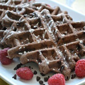 Double-chocolate-waffles-parks-and-recreation
