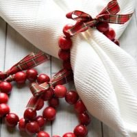 DIY Cranberry Wreath Napkin Rings