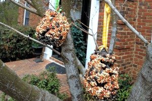 Make your own bird feeders with just a few things. Kids love this craft!
