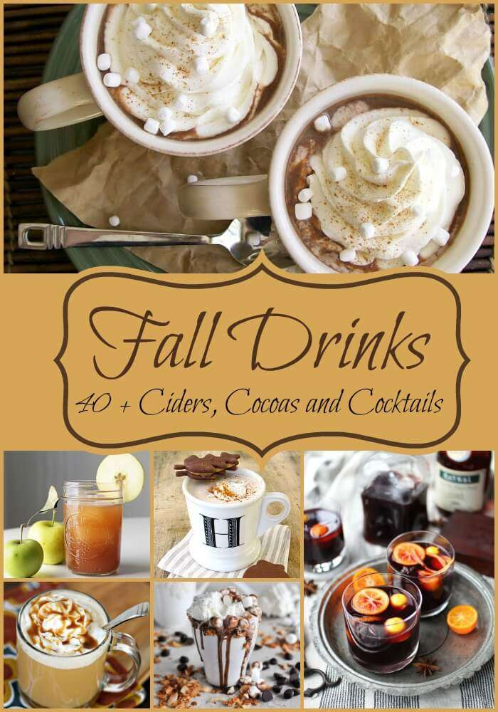 Over 40 fall drink recipes including cocoas, ciders, crock pot, frozen drinks, lattes and cocktails