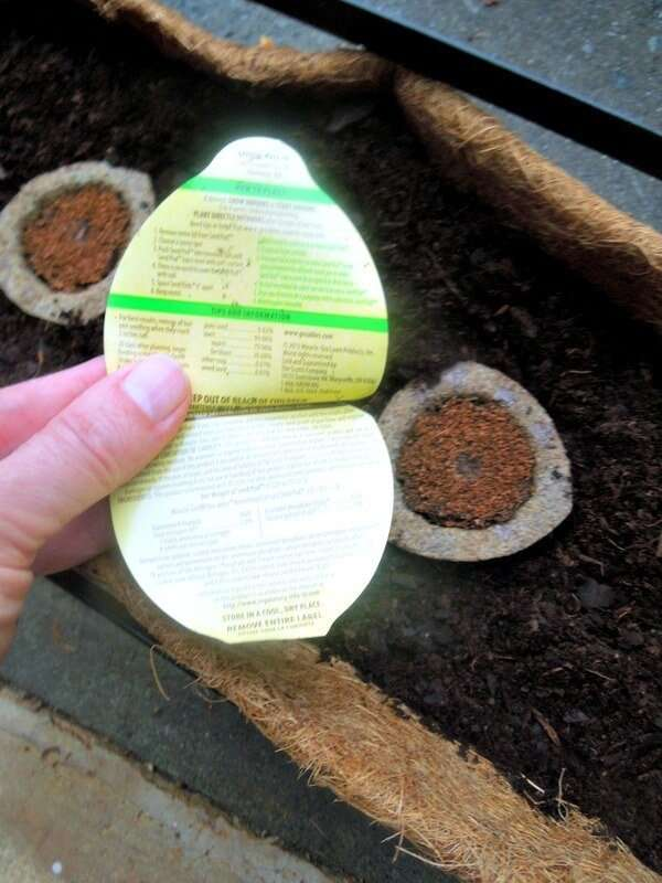 Growable Seed Pods for Easy Gardening