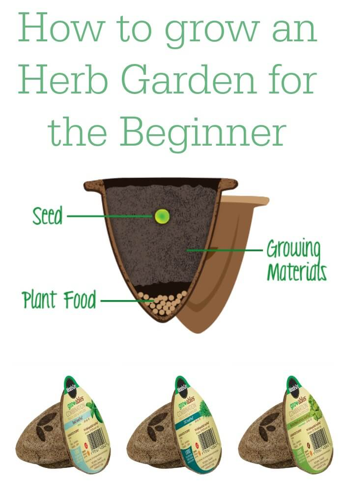 The easy way to grow and herb garden for a beginner