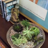 DIY Succulent Garden so easy to make and a great indoor garden project for fall and winter