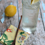 Elderberry Vodka Tonic