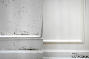 How to clean and remove mold from wood and walls and keep it from coming back and it won't mess up your paint!