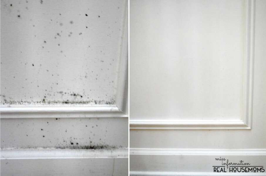 How To Remove Mold From Wood And Walls Miss Information