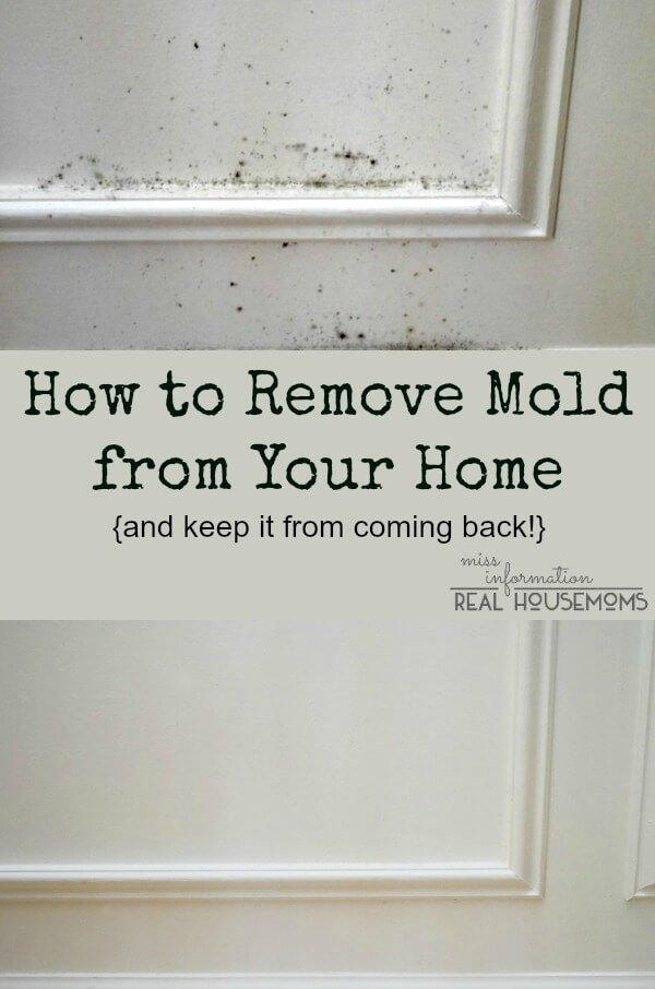 how to remove mold from wood and walls miss information. Black Bedroom Furniture Sets. Home Design Ideas