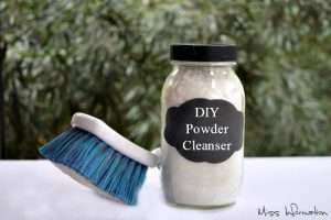 All Natural DIY Powdered Cleanser