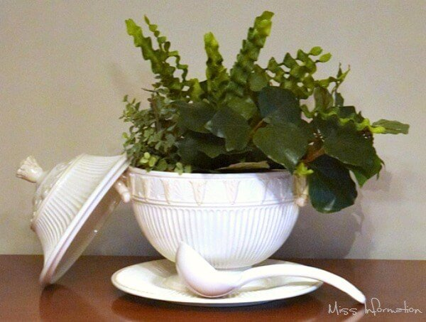 decorative and clever hostess gift - a houseplant inside of a serving dish.