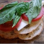 Grilled Caprese Sandwich - the ultimate grilled cheese
