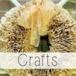 Look here for fantastic and easy craft ideas! Let Miss Information